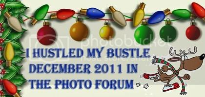 photo forum