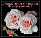 Flours &amp; Romance Feb 2012